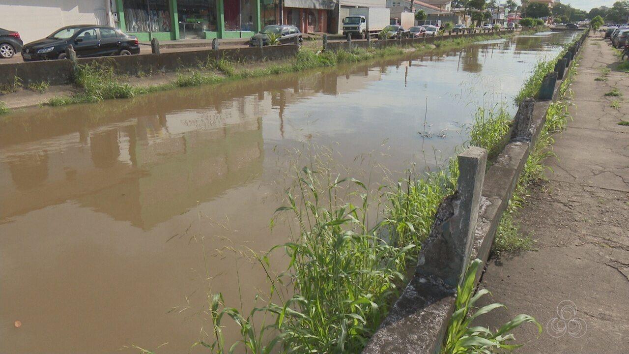 Em Macapá, plantas podem ajudar no controle de poluição da água