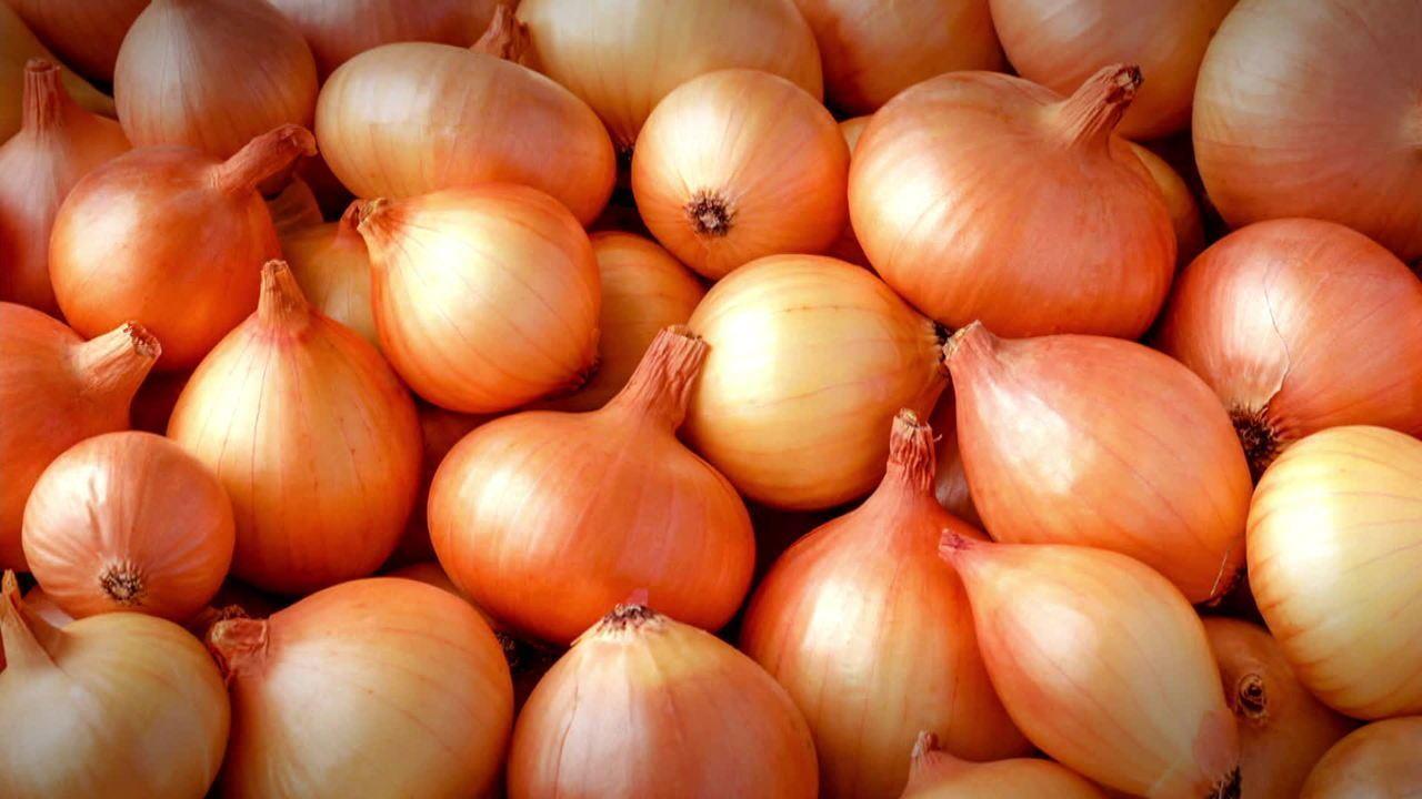 Brasil produz 50 variedades de cebola