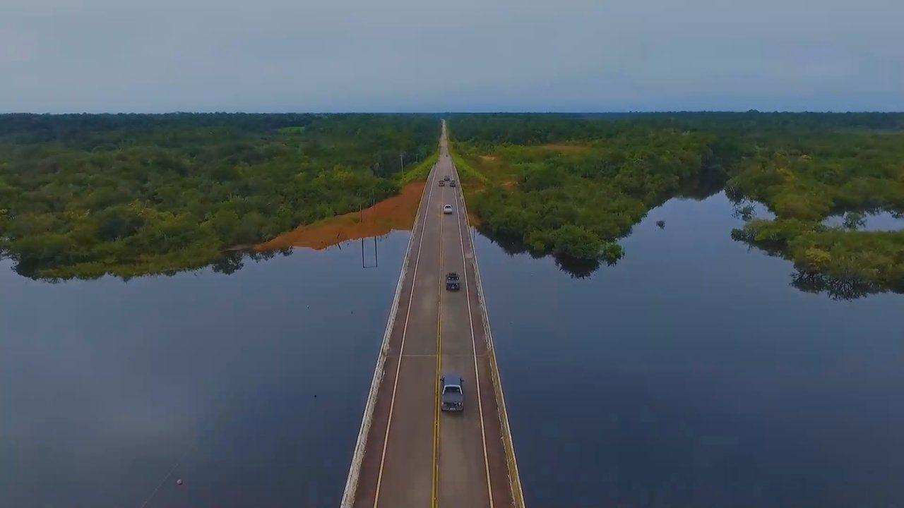 Grupo Rede Amazônica integra e desenvolve a Amazônia