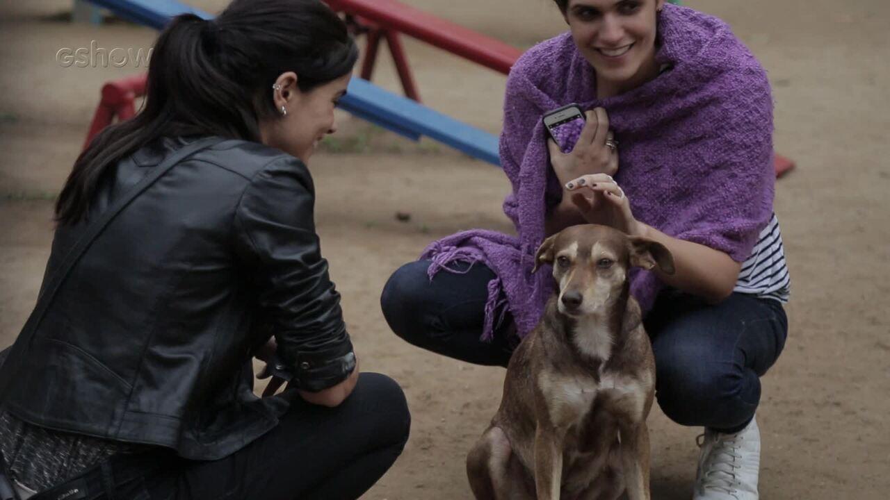 Simpático cãozinho rouba a cena em gravação de 'Pega Pega'
