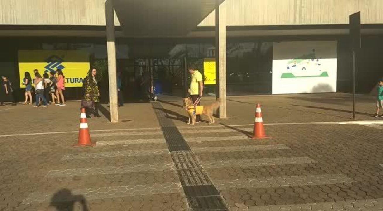 Thiago Figueiredo atravessa a rua com a ajuda da cão-guia, Mallie.