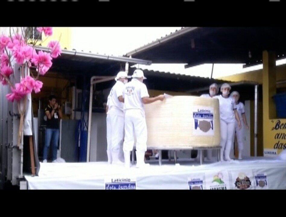 Ipanema produz maior queijo minas do país com 21 mil litros de leite