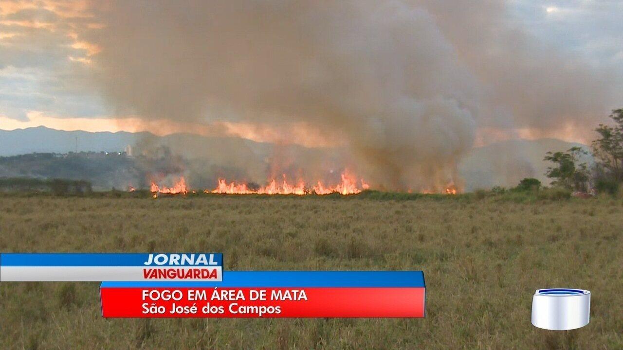 Queimada atinge região de mata no Jardim Limoeiro