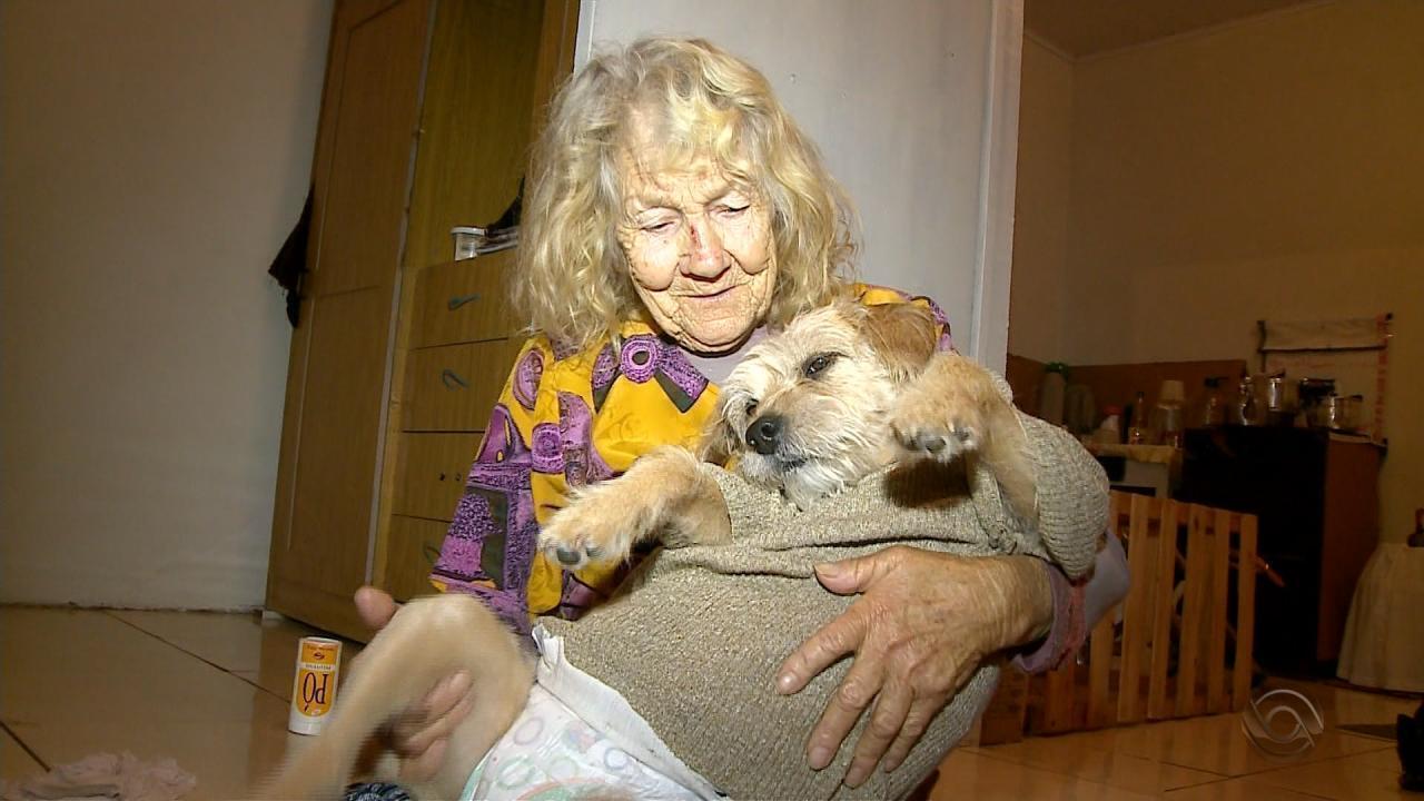 Aos 80 anos, idosa cozinha diariamente para alimentar cachorros de rua em Rio Grande