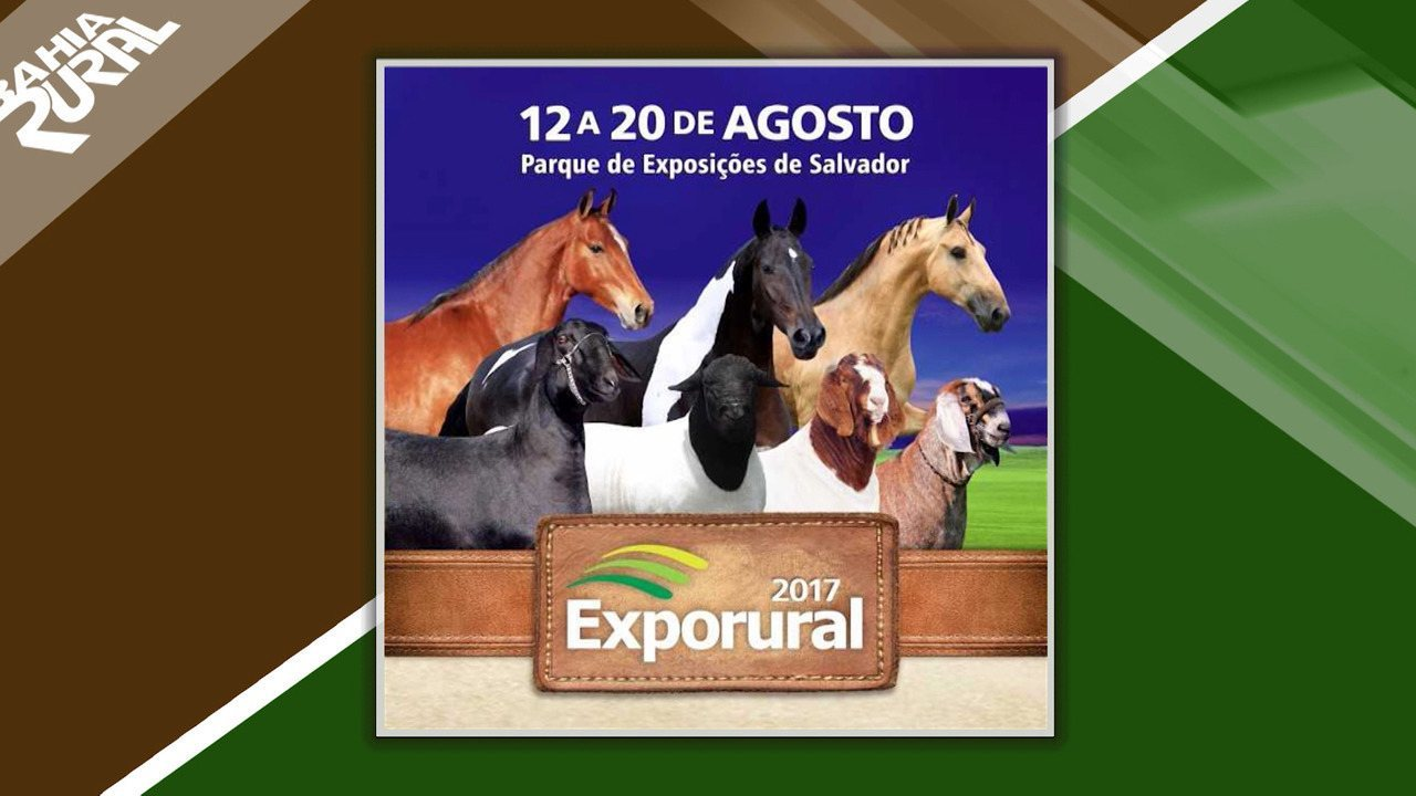 Exporural é realizada em Salvador até 20 de agosto