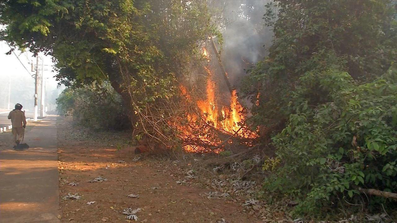 Incêndio destrói vegetação próximo a creche em Campo Grande