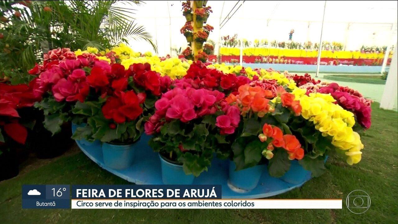 Arujá recebe uma das maiores feiras de flores de São Paulo