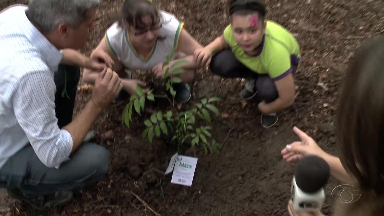 Pomar é plantado em área verde no bairro da Jatiúca