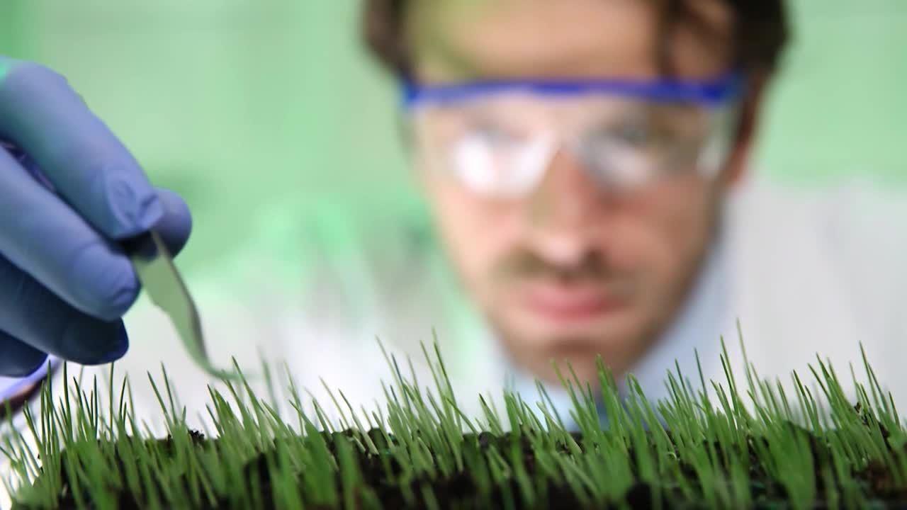 Você sabe tudo em que o agronegócio está inserido?