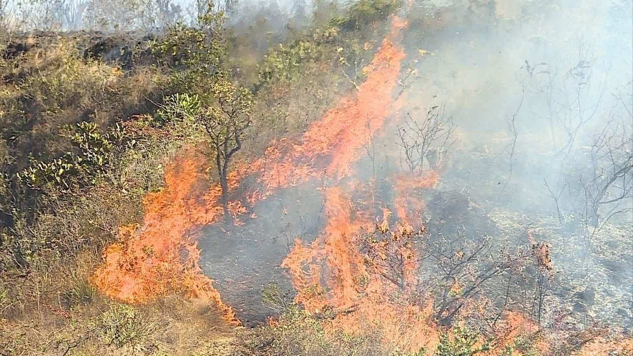 Fogo destrói vegetação no Parque Estadual da Serra do Rola Moça