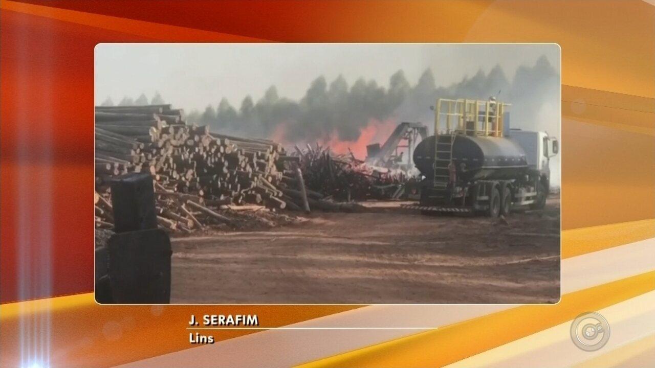 Incêndio atinge área às margens da Rodovia Marechal Rondon em Lins e mobiliza bombeiros
