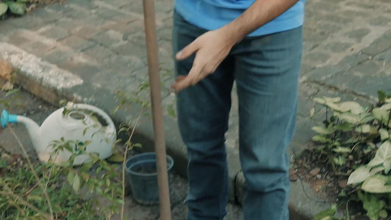 Nik Sabey, ambientalista