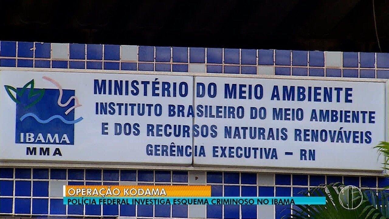 Operação da PF investiga irregularidades no Ibama do RN