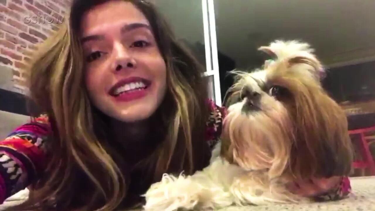 Amor de Bicho: Giovanna Lancellotti apresenta a Filó, sua cachorrinha de estimação
