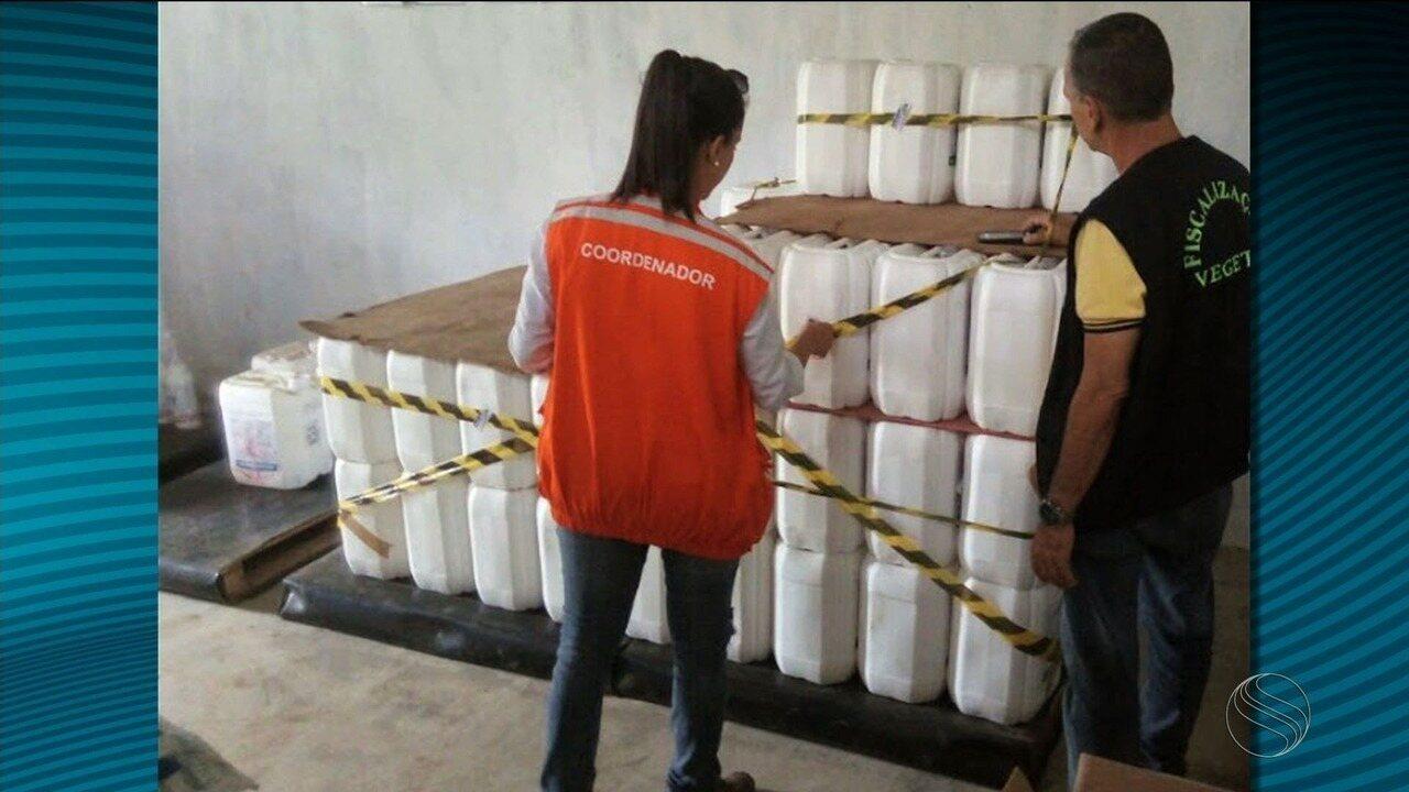FPI conclui que a foz do Rio São Francisco está em estado crítico