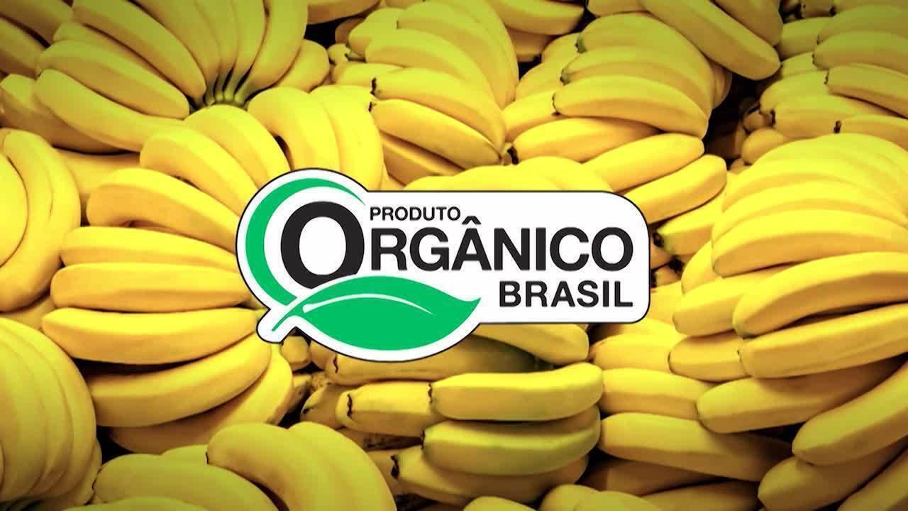Mercado de produtos orgânicos cresce no Brasil e faturou R$ 3 bilhões em 2016
