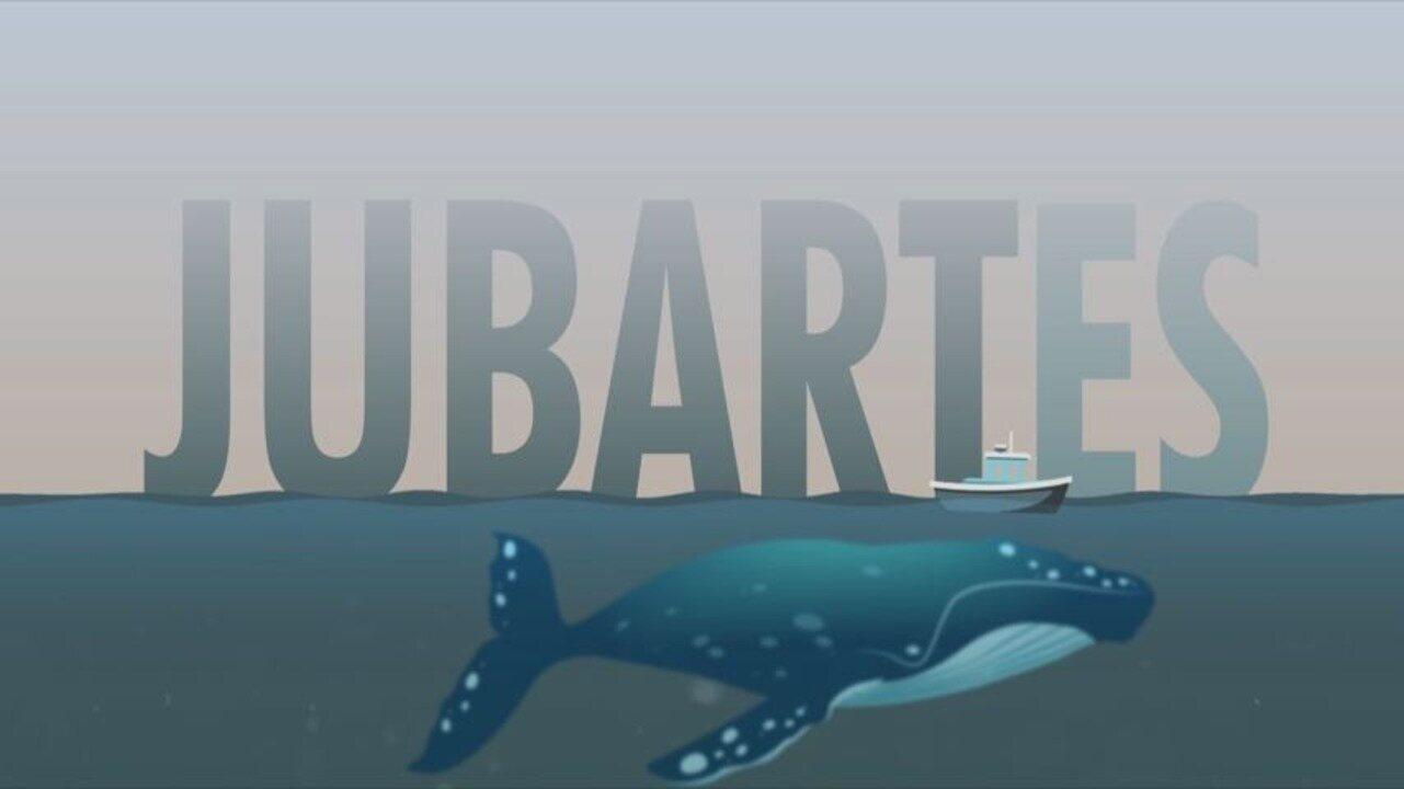 Em Movimento: Embarque com o 'EMME' em alto mar para ver as baleias Jubarte