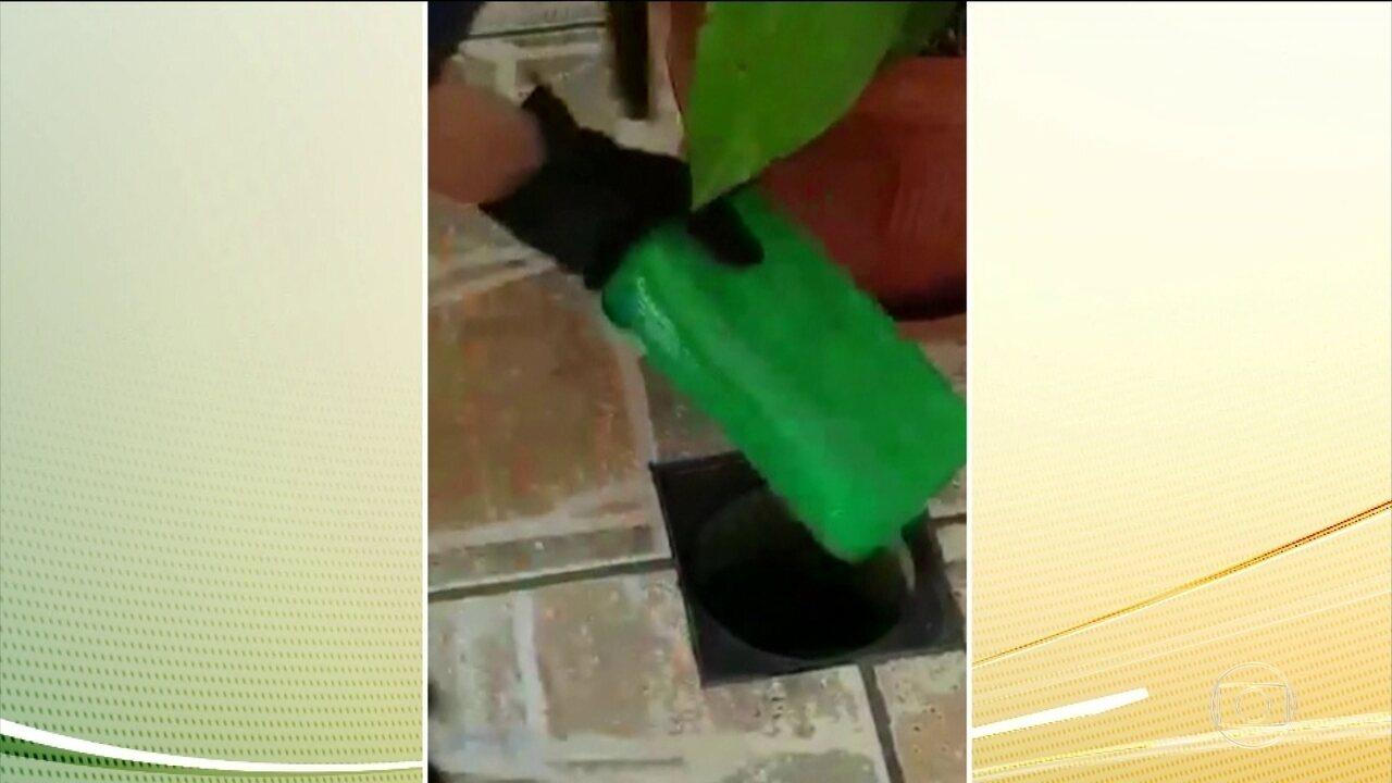 Trinta pessoas são presas em operação da PF contra tráfico internacional de drogas