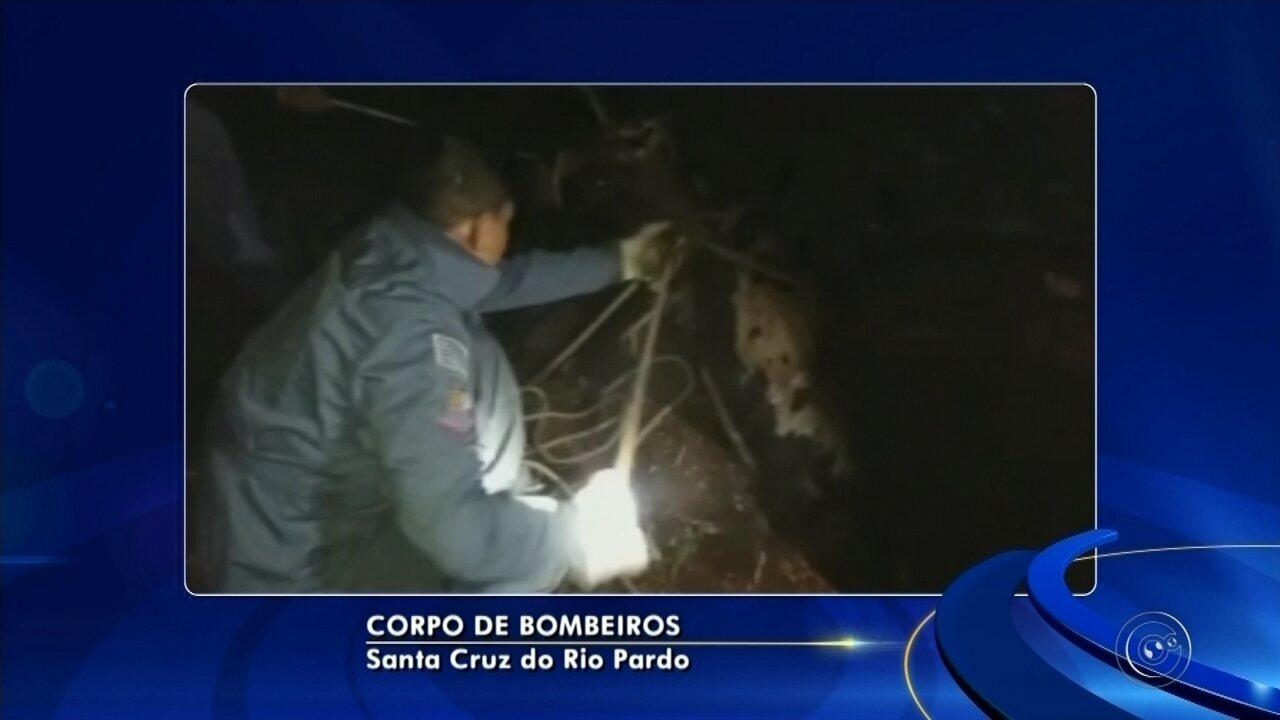 Bombeiros levam 4 horas para resgatar boi de poço de 5 metros de profundidade