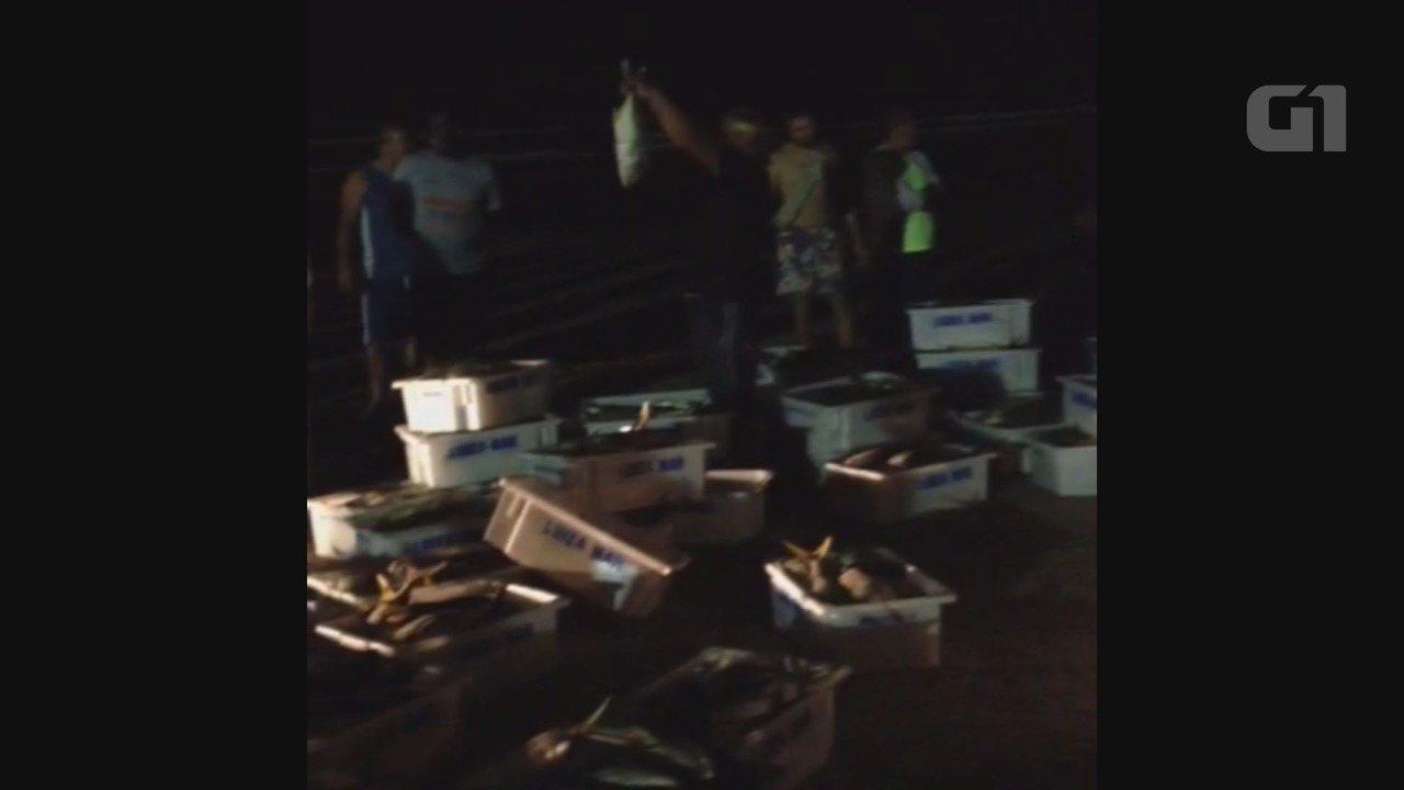 Pescaria resultou em cinco toneladas de peixes e grande robalo