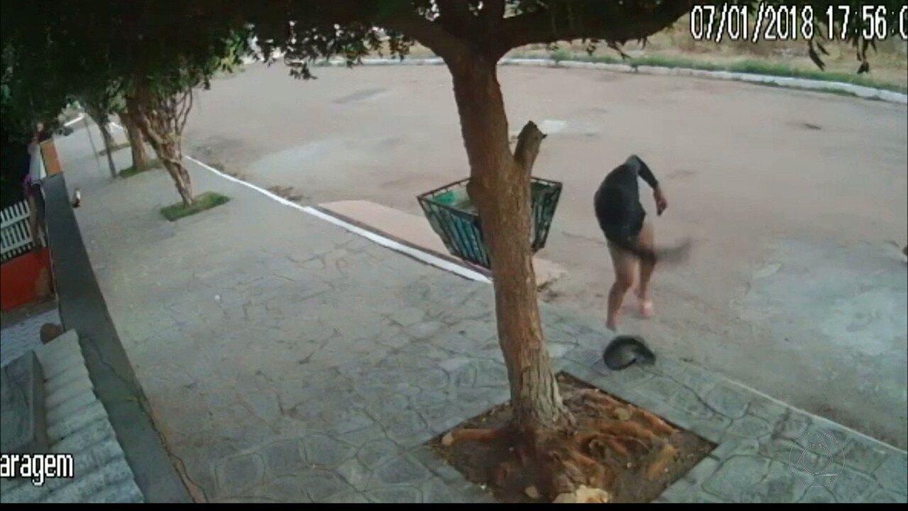 Em Cabedelo, homem é flagrado agredindo gato
