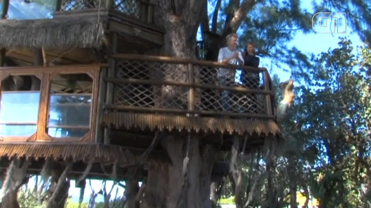 Casal vai ter que derrubar casa da árvore irregular em ilha nos EUA