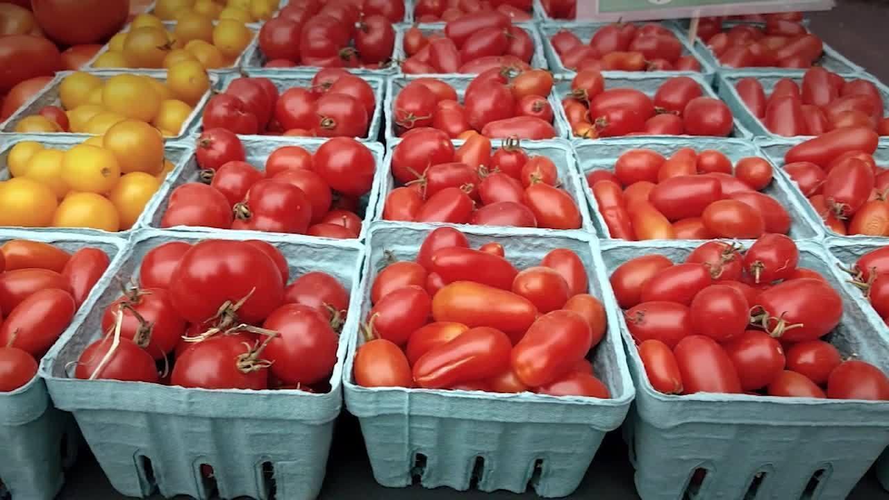 Produção de tomates fatura R$ 14 bilhões em 2017