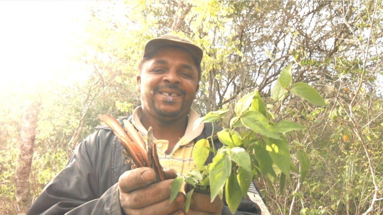 Em Morro do Chapéu, raizeiro Josenir Rodrigues fala das plantas que curam