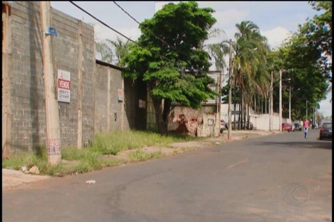 Cinco macacos são encontrados mortos por moradores em Uberlândia