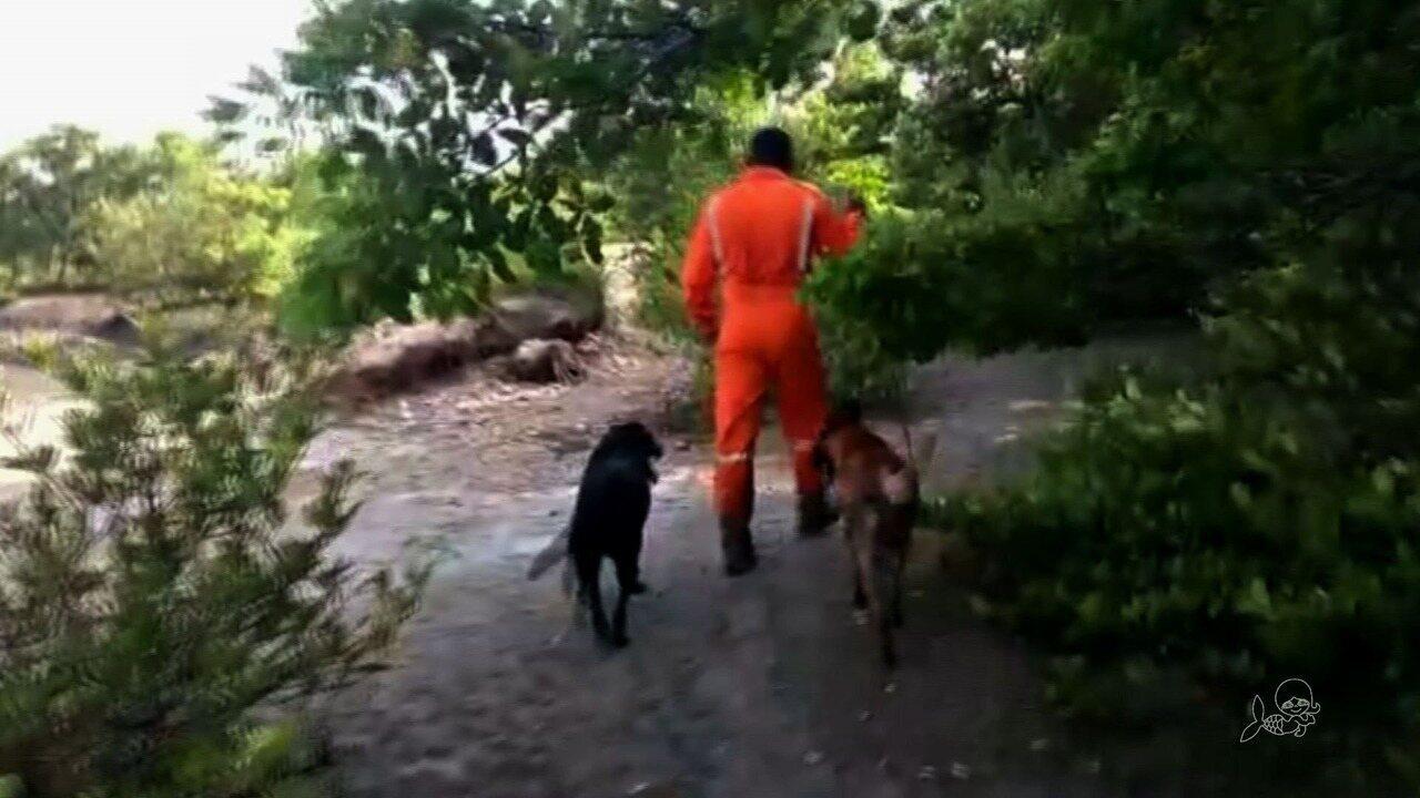 Corpos de mulheres são deixados em matagal em Fortaleza