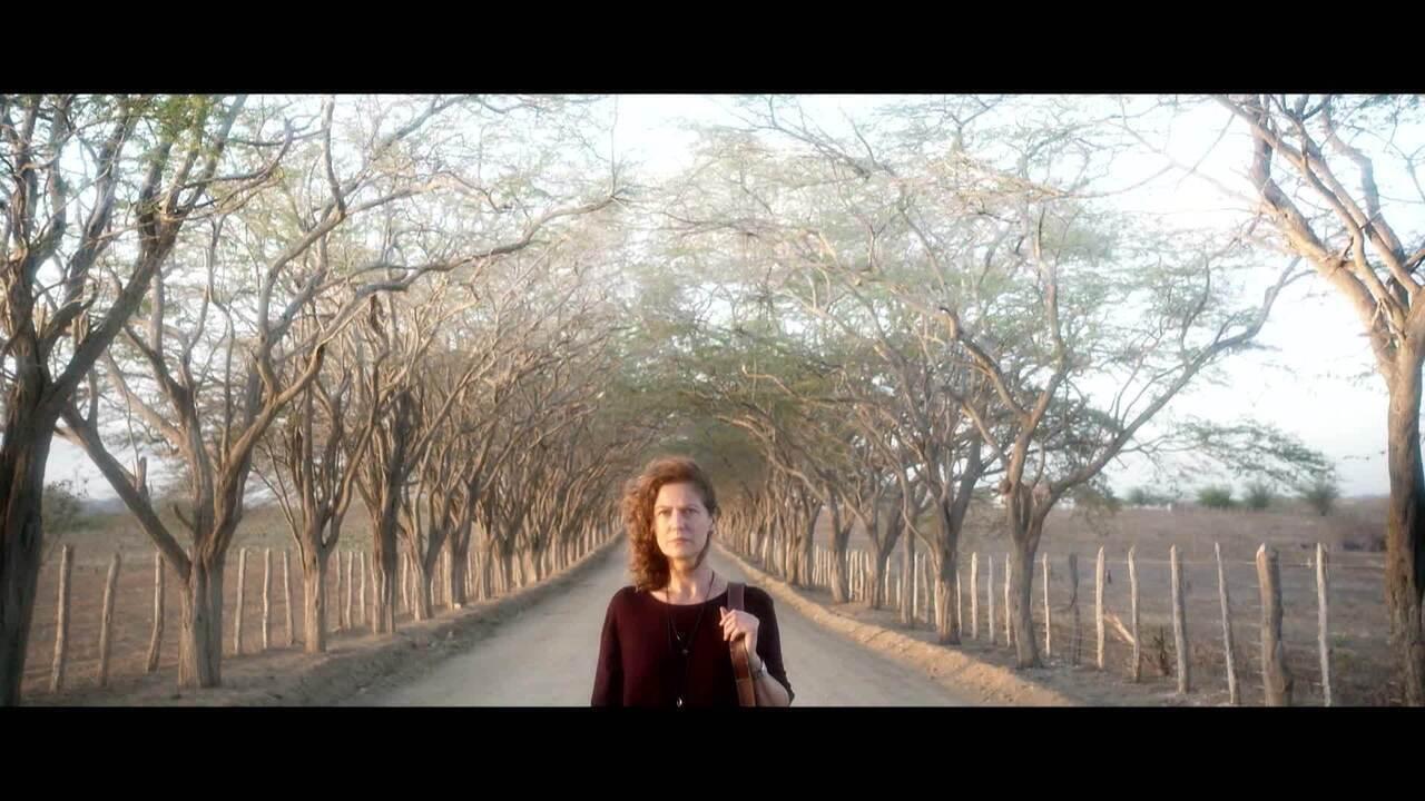 Conheça Cassia (Patrícia Pillar), de 'Onde Nascem os Fortes'