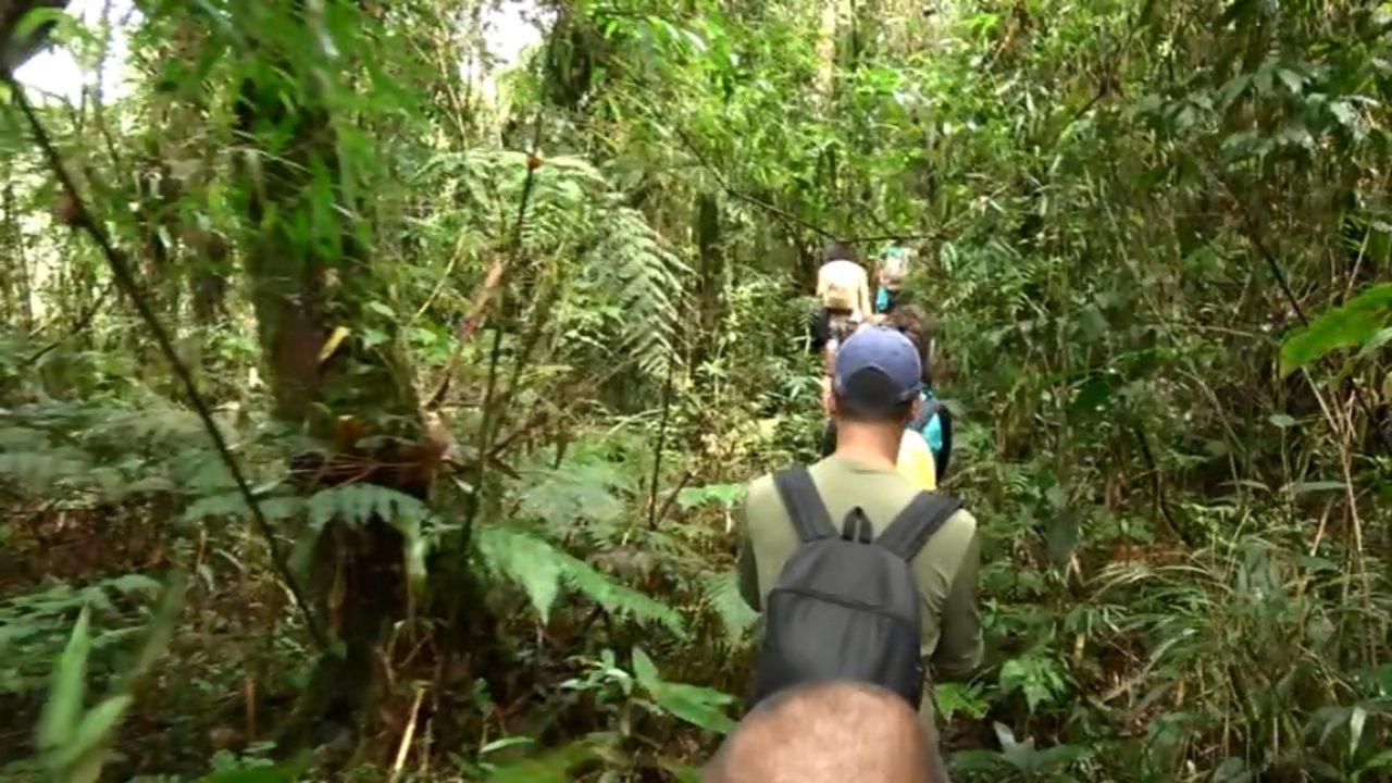Plug passeia por São José dos Pinhais (parte 1)