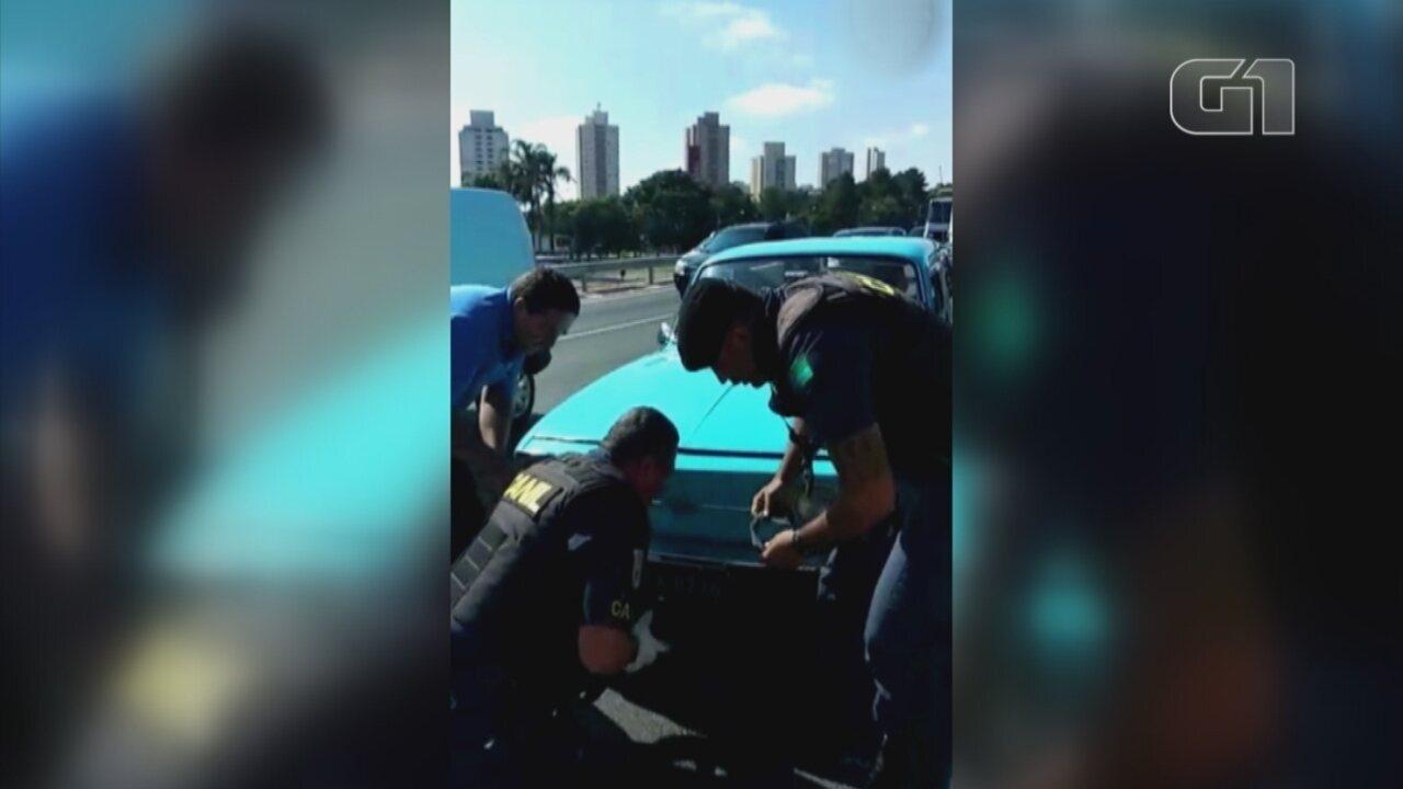 Vira-lata é resgatado na rodovia Anhanguera em Jundiaí