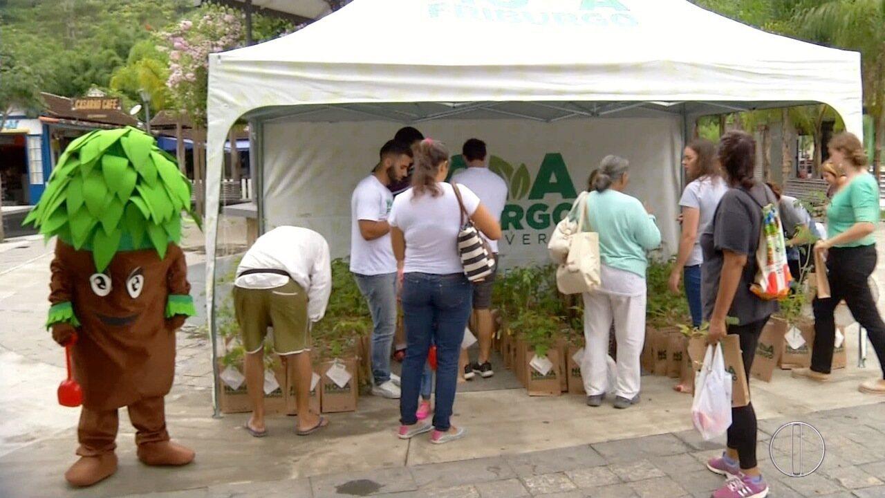 Praça no distrito de Lumiar, em Nova Friburgo, RJ, recebe ação do projeto 'Cidade Verde'