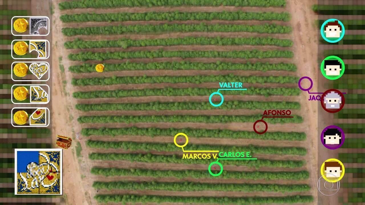 O Labirinto Verde: veja a prova que define participação da família no 'Lar Doce Lar'