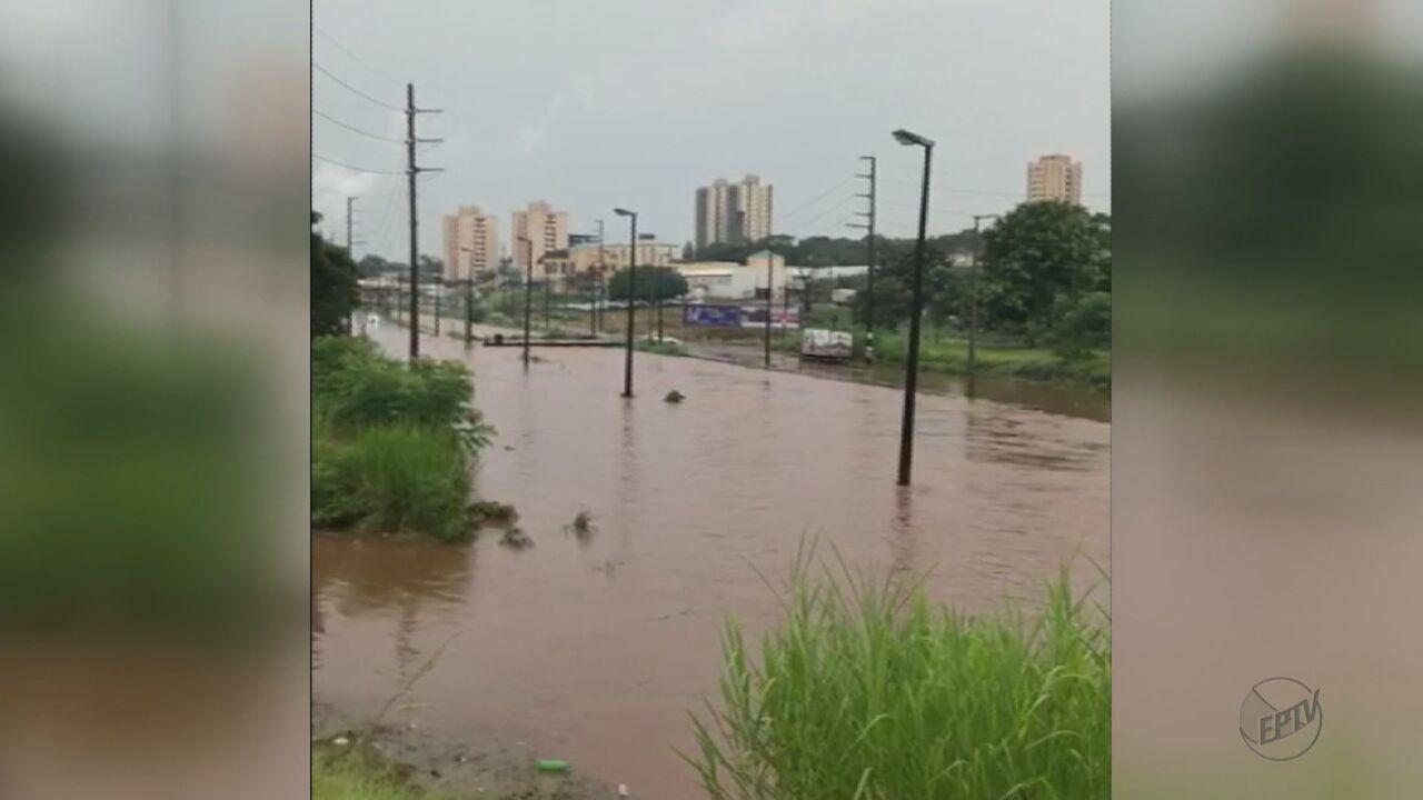 Araraquara, SP, estuda soluções para o problemas das enchentes