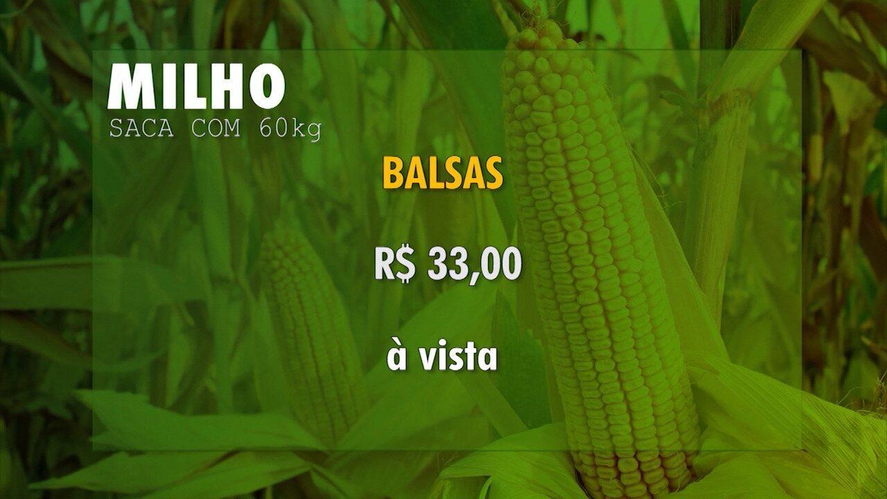 Veja a cotação dos grãos no Maranhão