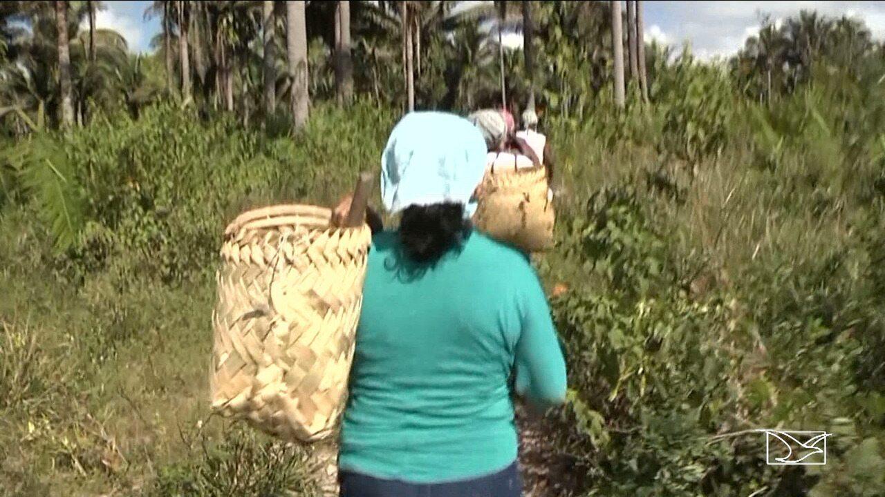 Mais de 100 pessoas estão ameaçadas no MA por causa de conflitos agrários