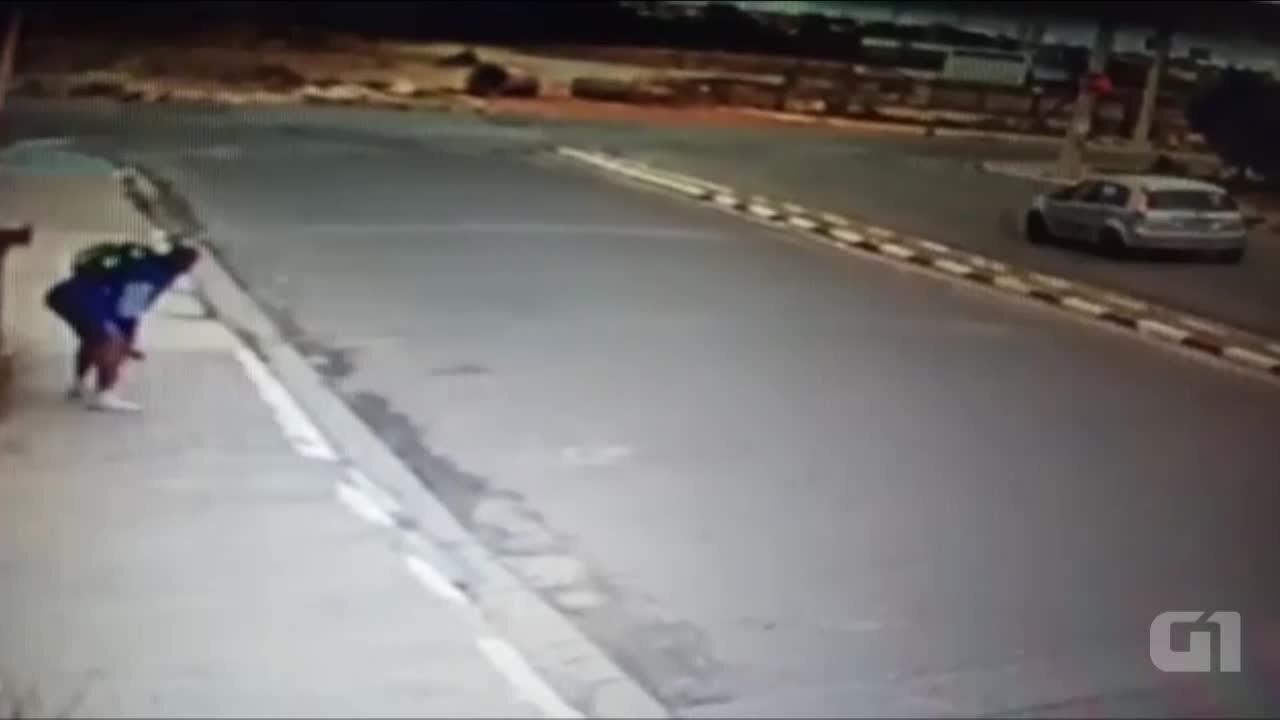 Câmera grava gata sendo arremessado por homem em Suzano