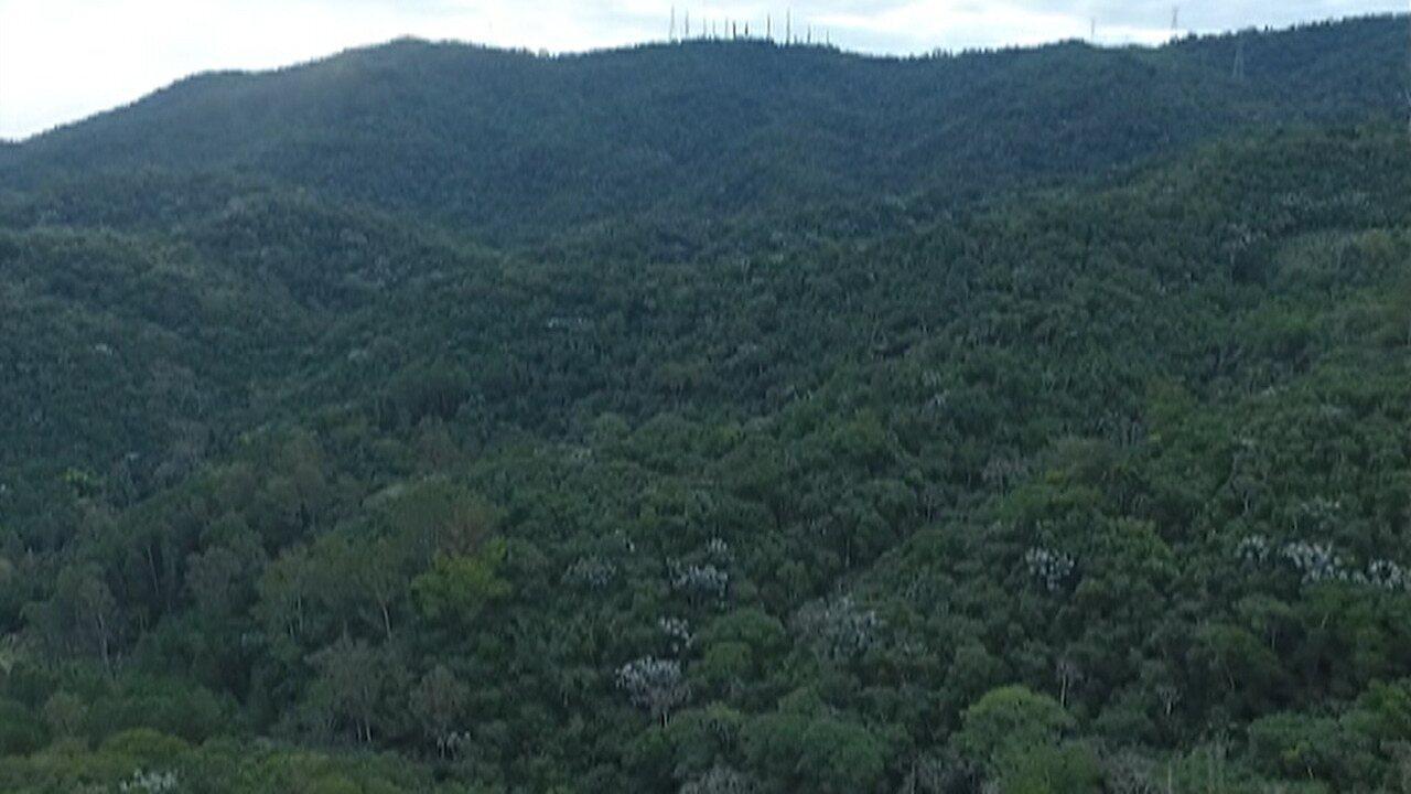 Conselho Estadual de Meio Ambiente aprova criação de área de proteção na Serra do Itapety, em Mogi