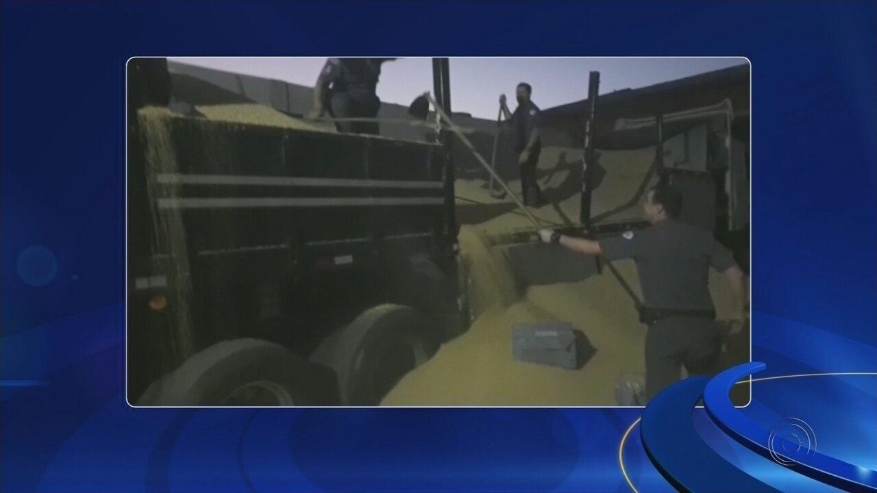 Polícia apreende meia tonelada de pasta base de cocaína em Mirassol