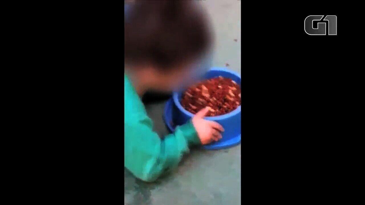 Polícia investiga mãe suspeita de incitar menino deficiente de 2 anos a comer ração, em GO