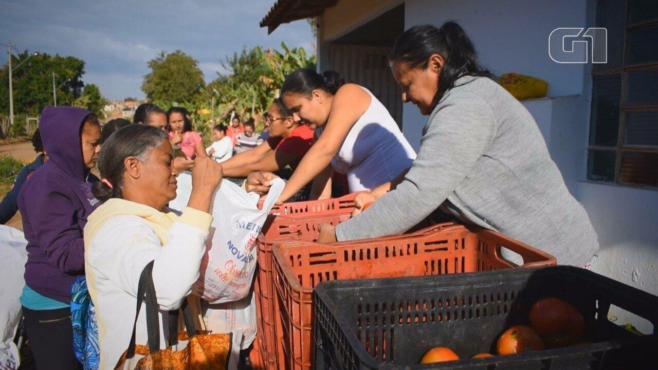 'Tá na Mesa': População carente de Campinas e região recebe alimentos doados pela Ceasa