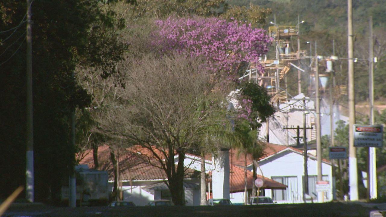 Mineradora é condenada a pagar indenização por explorar área de preservação ambiental