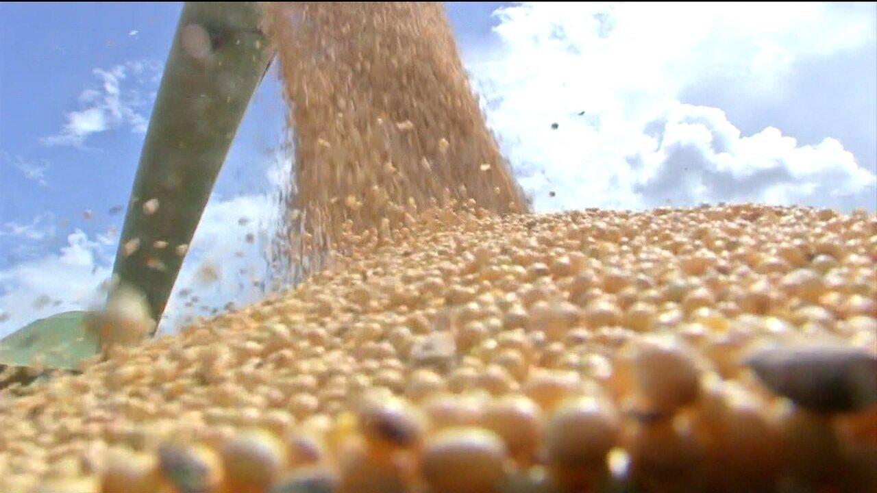 Mercados importadores barram 20 produtos brasileiros