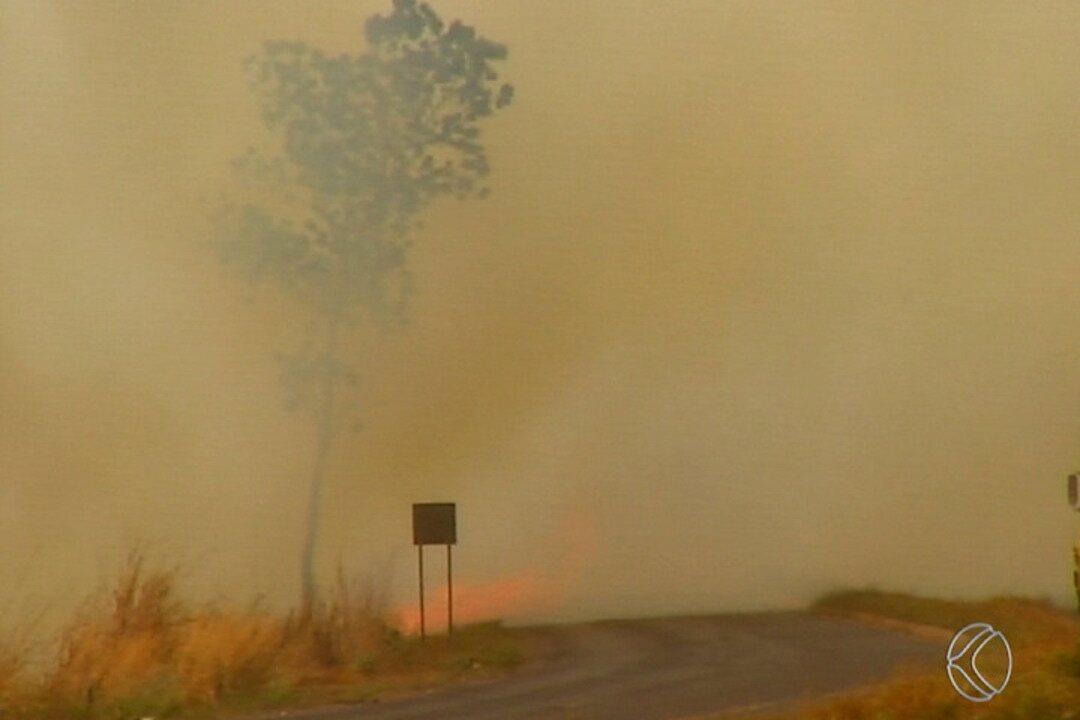 Bombeiros voltam a combater incêndio na região do Distrito Industrial III em Uberaba