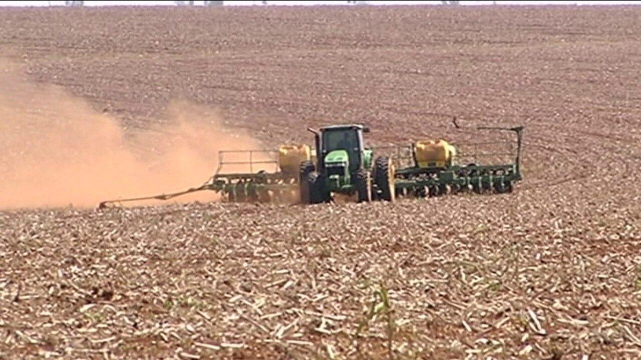 Aumenta apreensão de agrotóxicos contrabandeados no plantio da soja