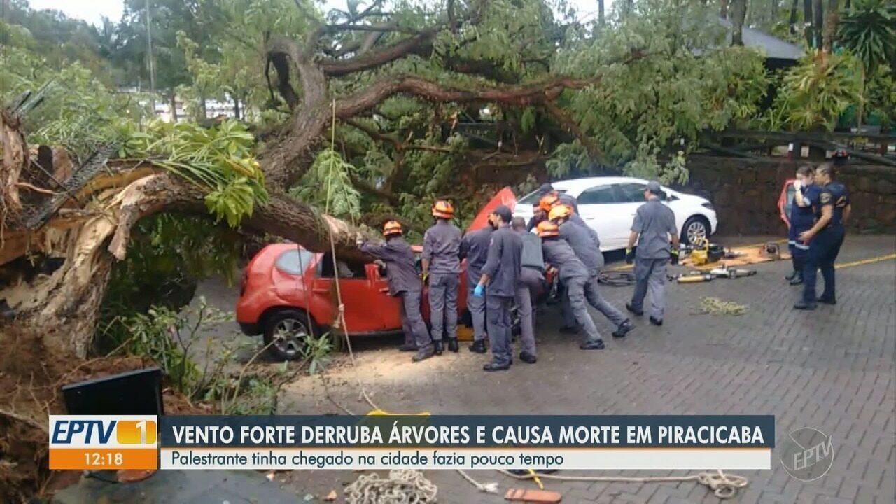 Jovem morre com queda de árvore após vento forte, em Piracicaba