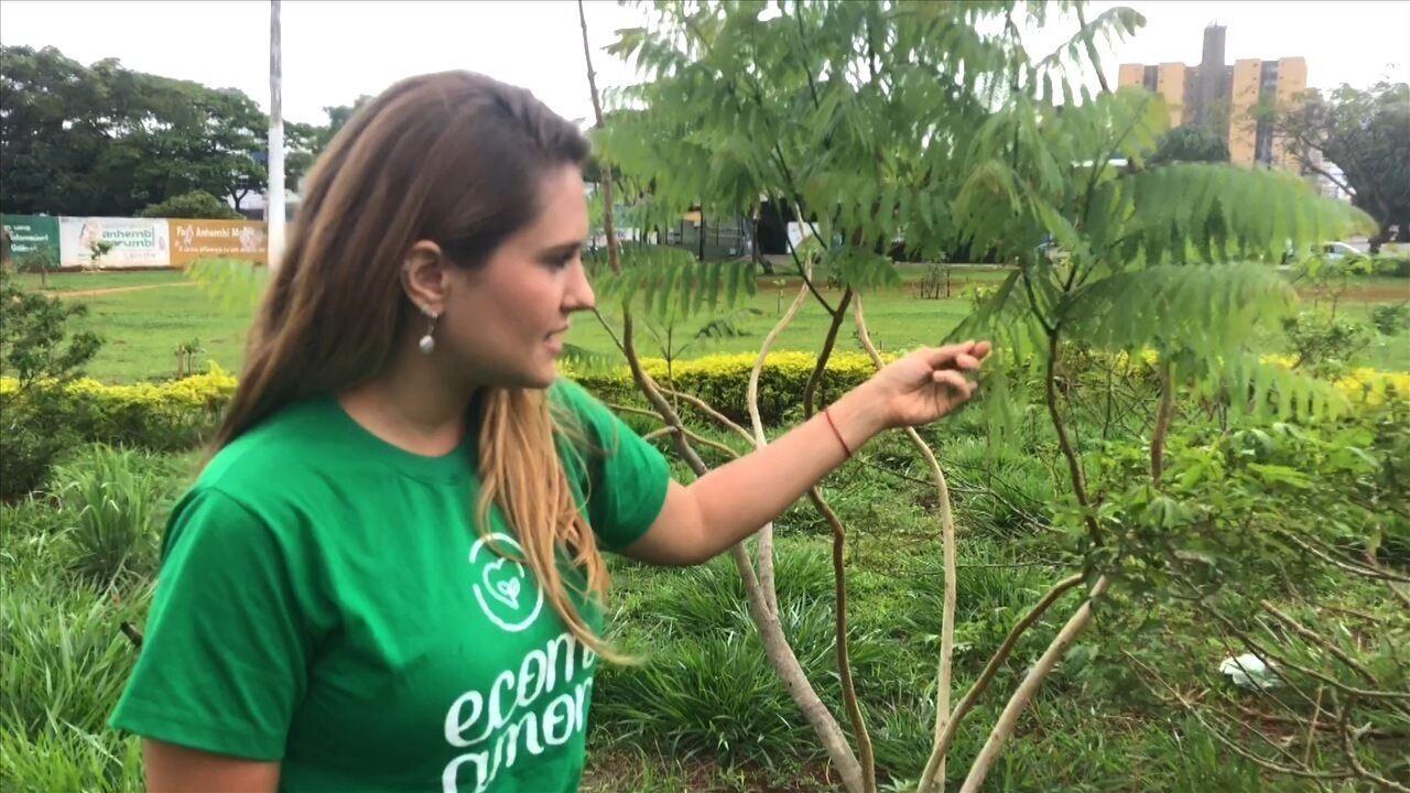 Jordana Mendonça desenvolve projeto que já plantou 23 hortas orgânicas em instituições públicas de Goiânia