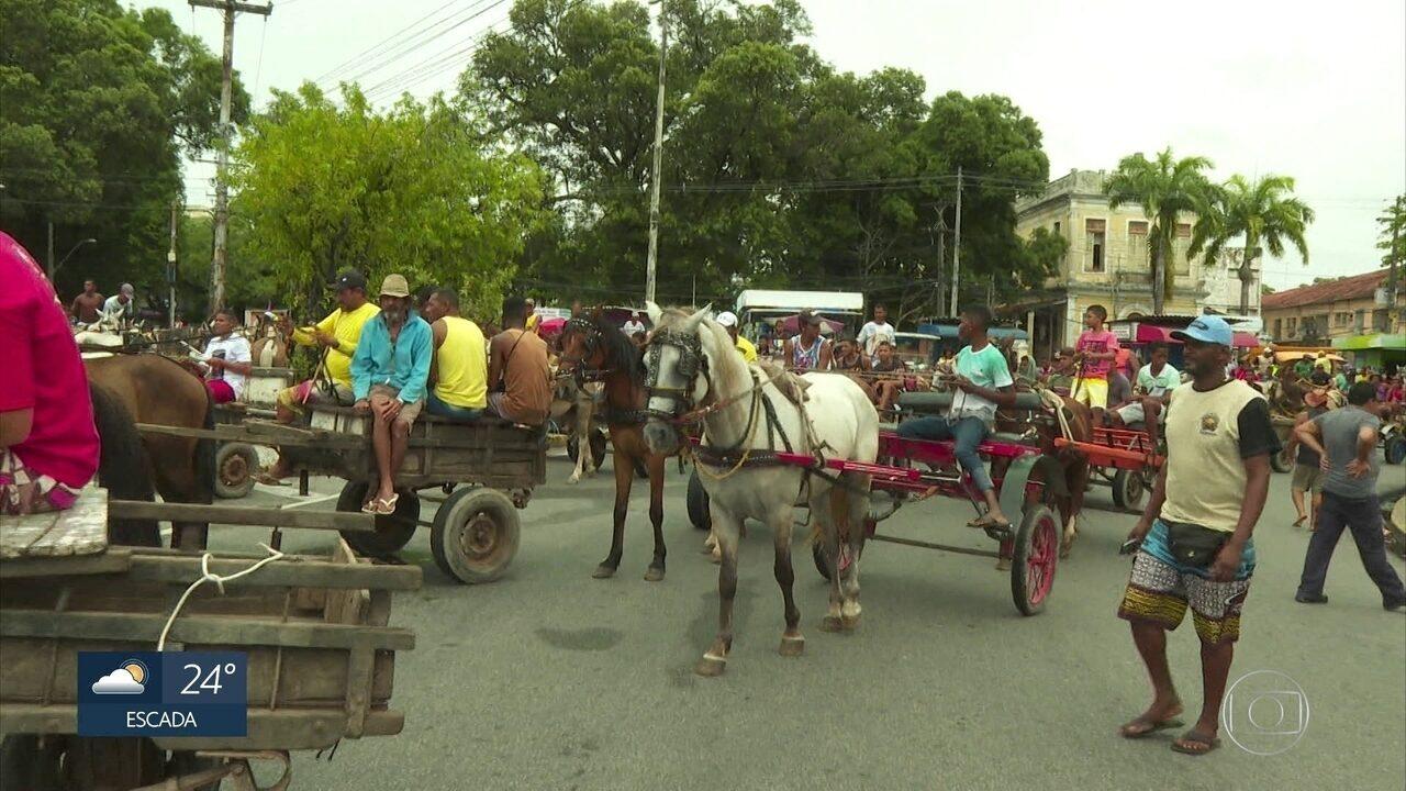 Carroceiros protestam por lei que obriga regulamentação de veículos de tração animal